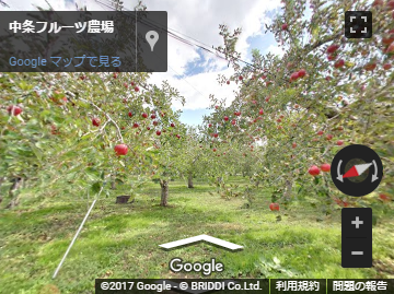 中条フルーツ農場